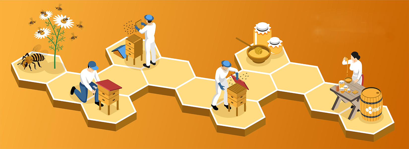 Stages of honey production from nectar collection to product packaging on gradient background isometric horizontal vector illustration